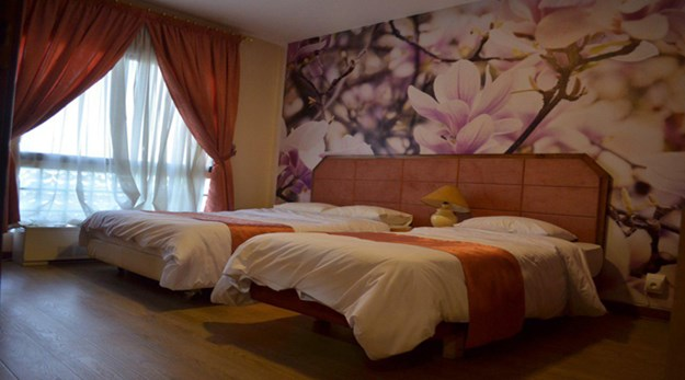 نمای اتاق هتل خانه سبز مشهد -خانه سبز